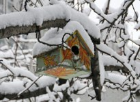 Winter Birdhouse Hubert J Steed